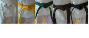 belt progression