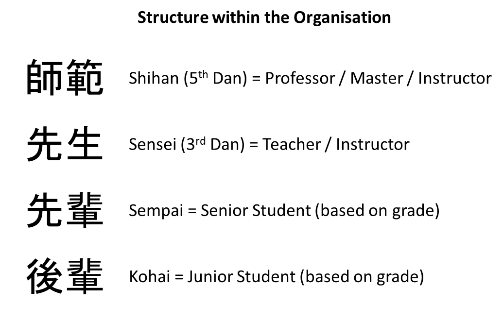 Stucture_within_the_Organisation
