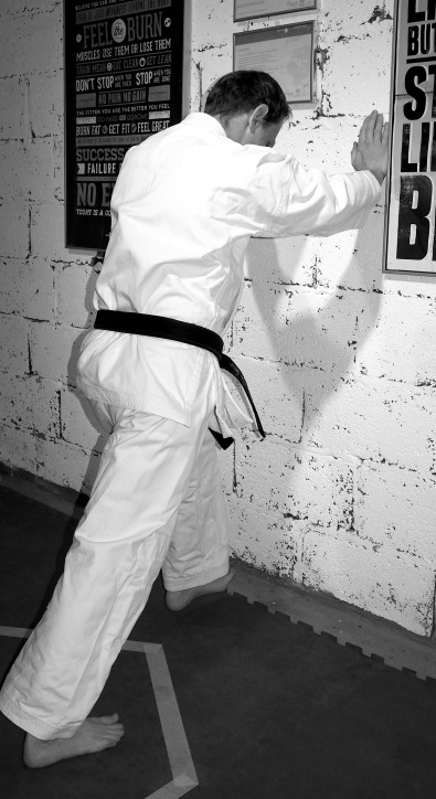 Shin Ai Do Karate
